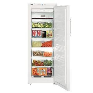 Congélateur armoire garanti 5 ans LIEBHERR GNP2713-24